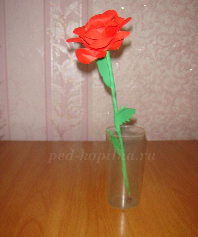 Как сделать розы из ватных дисков своими руками пошагово с 73