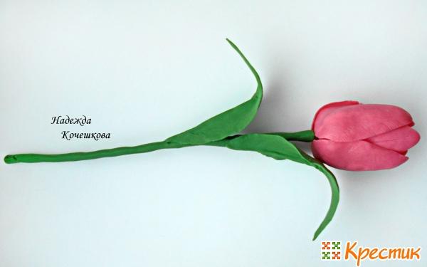 Мастер класс тюльпаны из полимерной глины