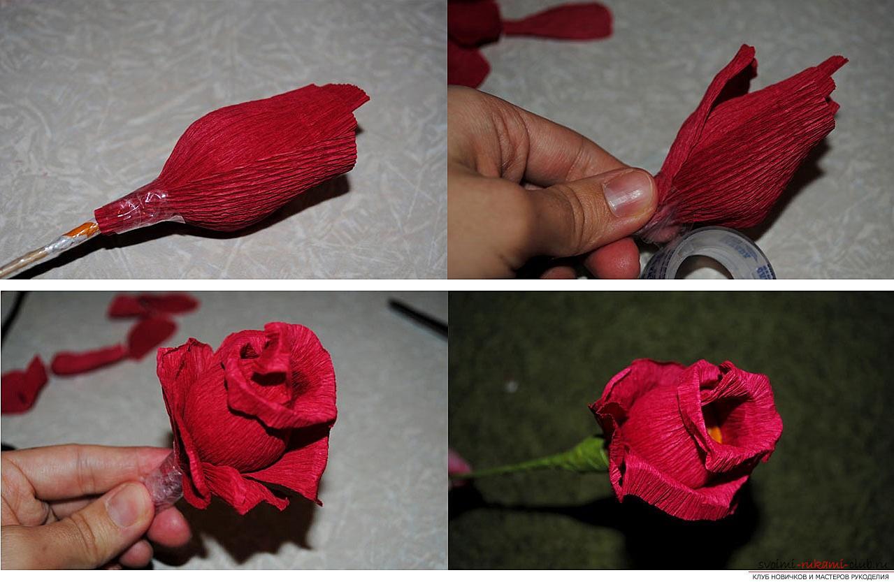 Пошаговая инструкция букетов из гофрированной бумаги